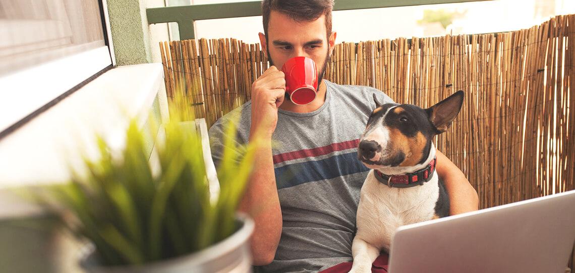 Rad od kuće i porast internet poslovanja u doba koronavirusa